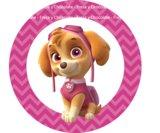 Papel Impreso Patrulla Canina 3